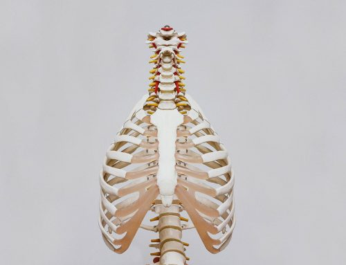 Illuminating Chiropractor Fears and Common Myths Before Your First Appointment